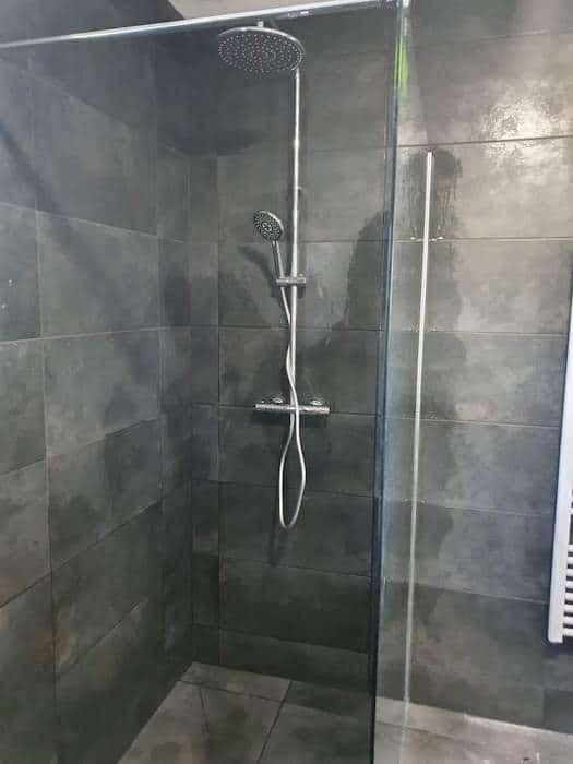 Zoom sur la douche et sa colonne